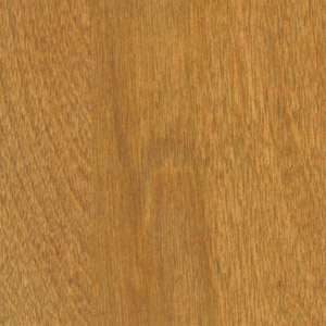 Cinnamon Wood Stain