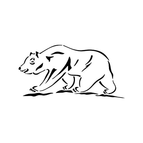 Bear Design Back